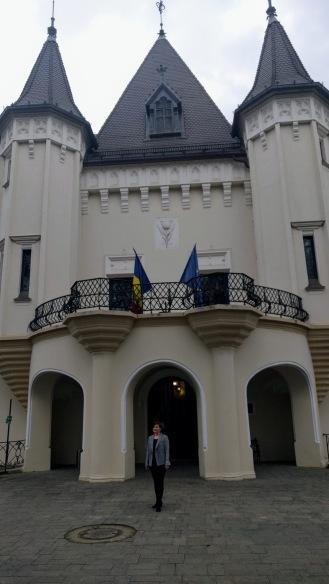 Károlyi kastėly kapujában